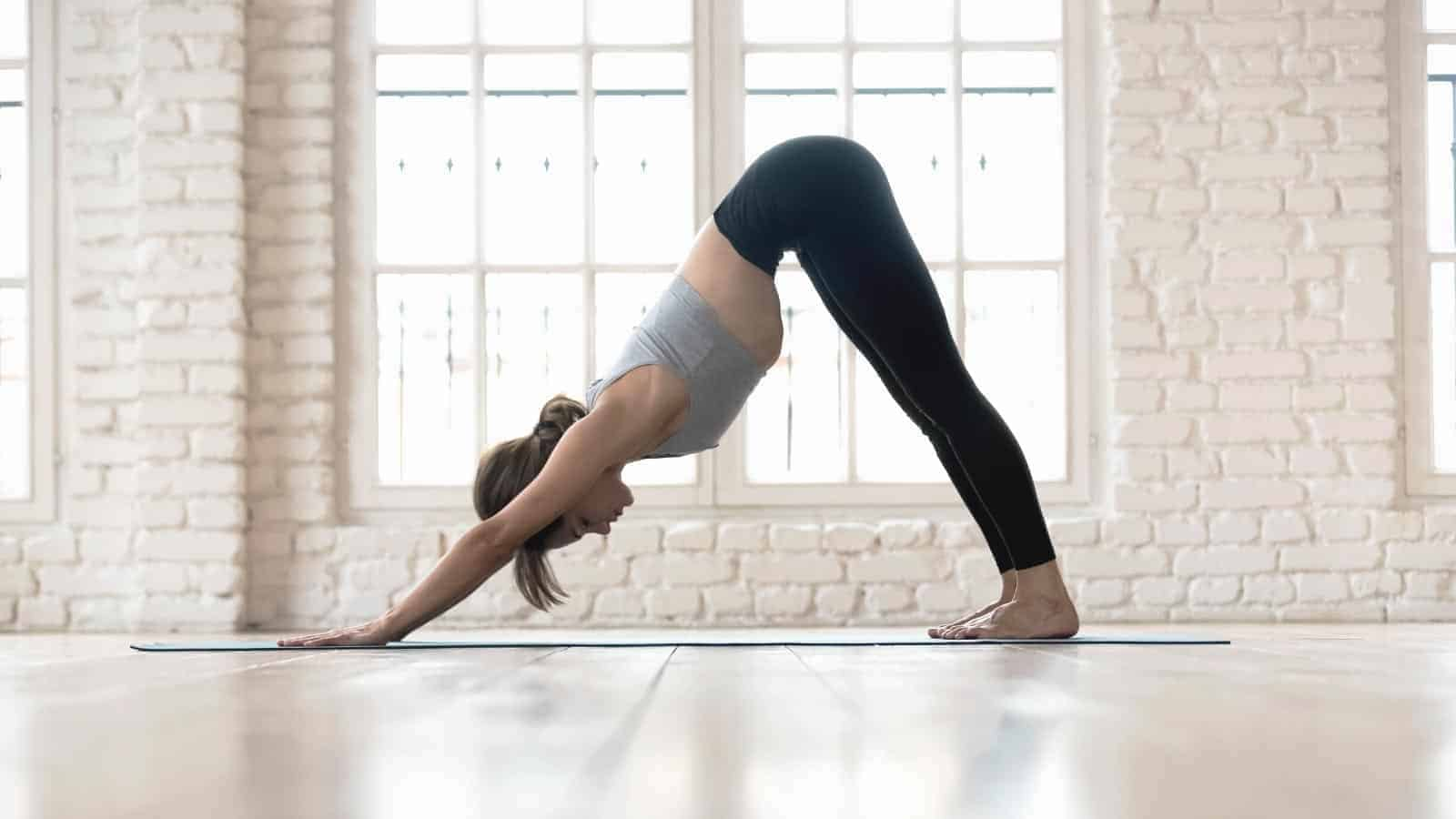 Difference between mountain pose and downward dog